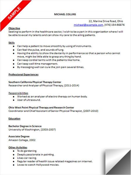 physical therapist assistant resume sample therapy professional summary personal banker Resume Physical Therapist Assistant Resume Professional Summary
