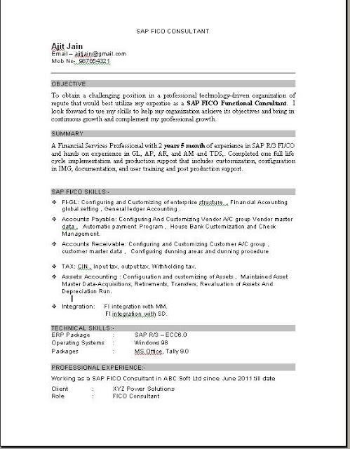 sap fico consultant resume education pdf sample for years experience combination template Resume Sample Resume For Sap Fico Consultant 3 Years Experience
