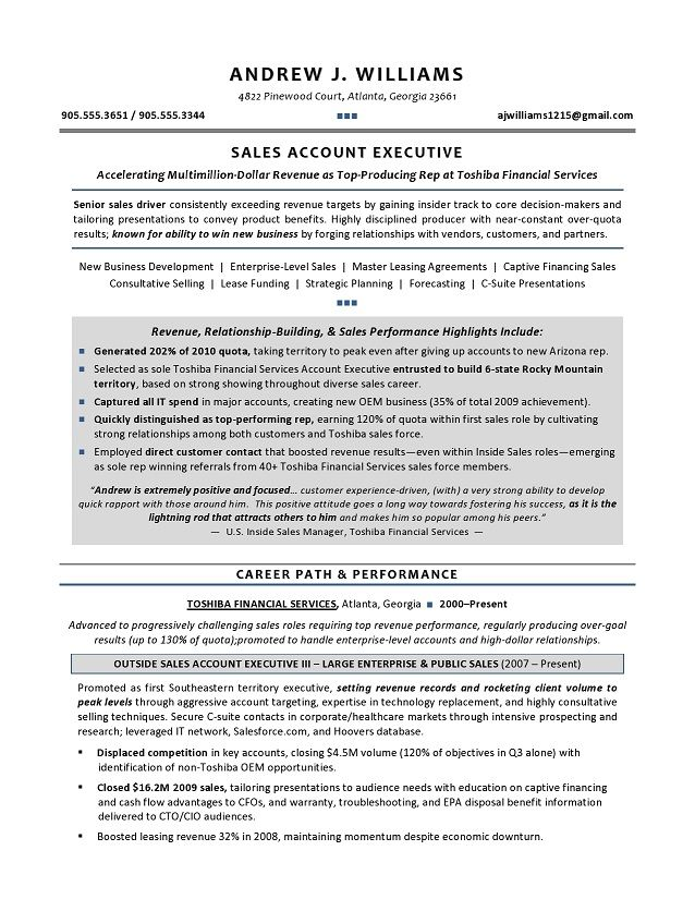 technical resume executive writer for it leaders free awesome templates microsoft word Resume Technical Executive Resume