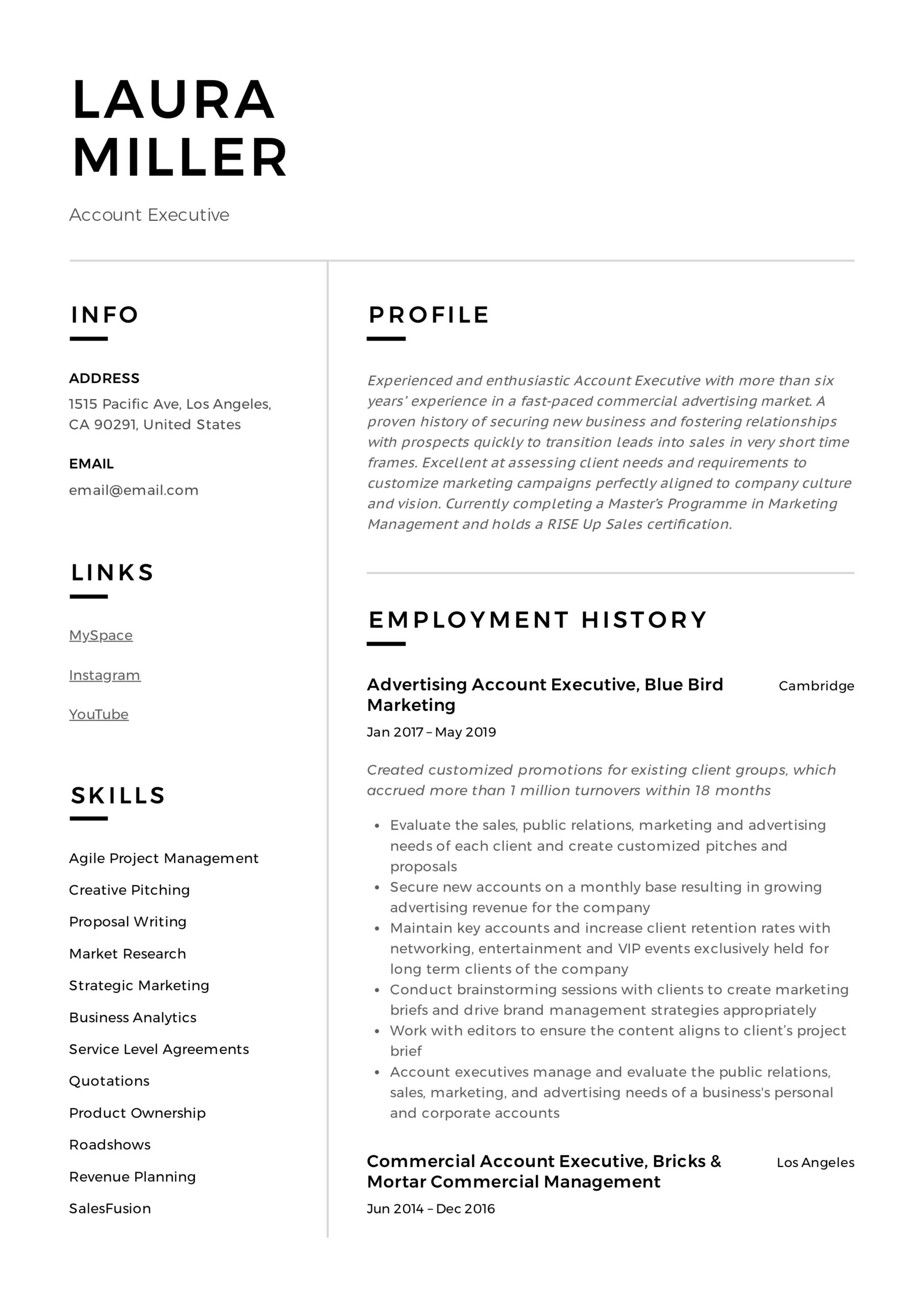 account executive resume writing guide templates pdf sample for client service example Resume Sample Resume For Client Service Executive