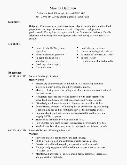 best of gallery resume examples career highlights server cv exceptional sample for Resume Exceptional Resume Examples