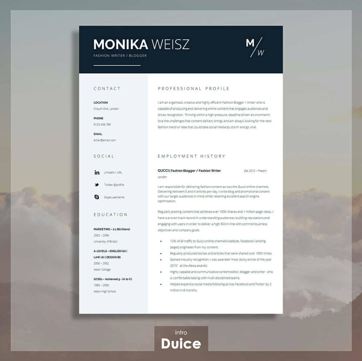 best resume templates for top picks to high quality senior network administrator profile Resume High Quality Resume Templates