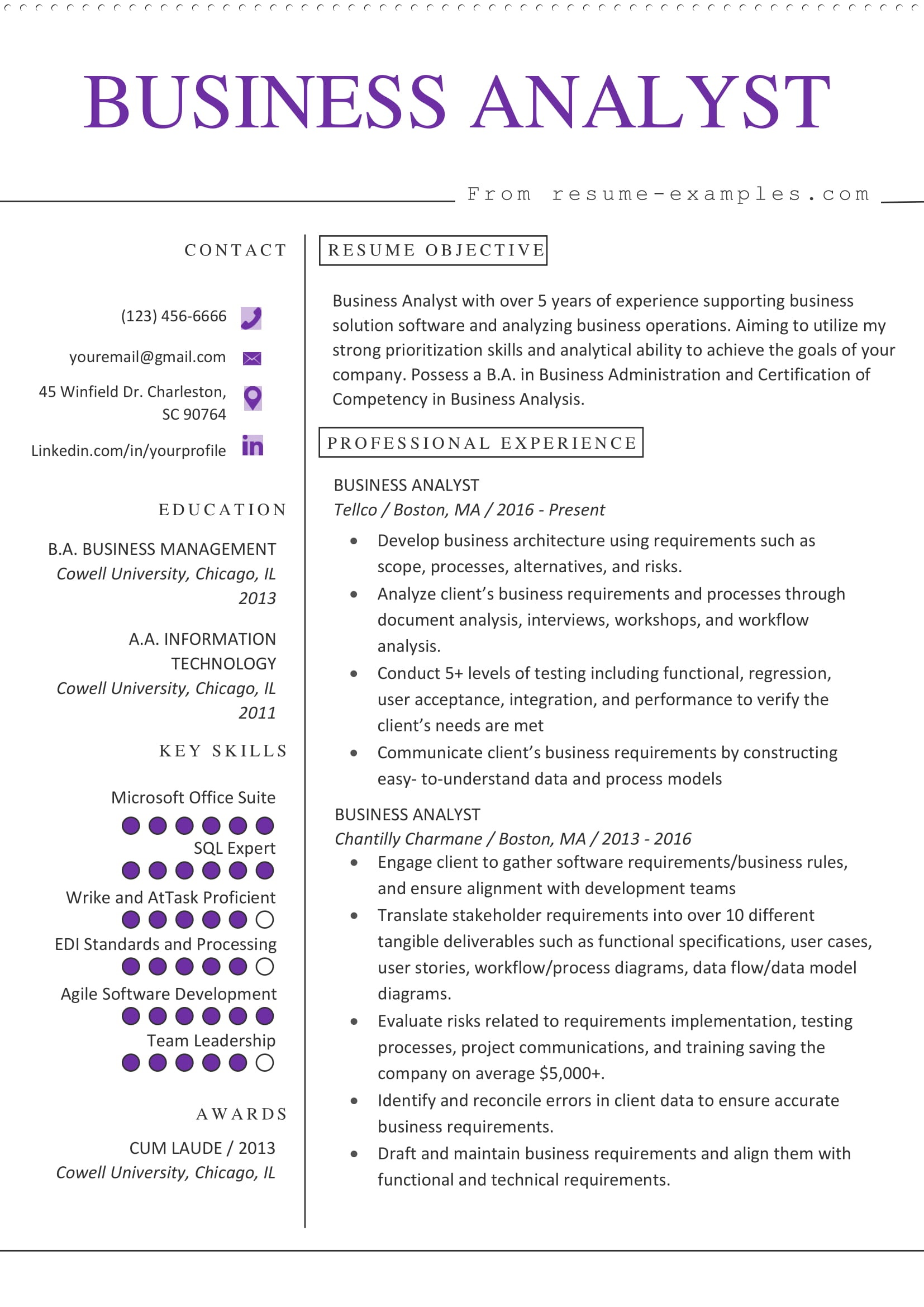 business analyst resume example microsoft word format information technology sample Resume Information Technology Business Analyst Resume Sample