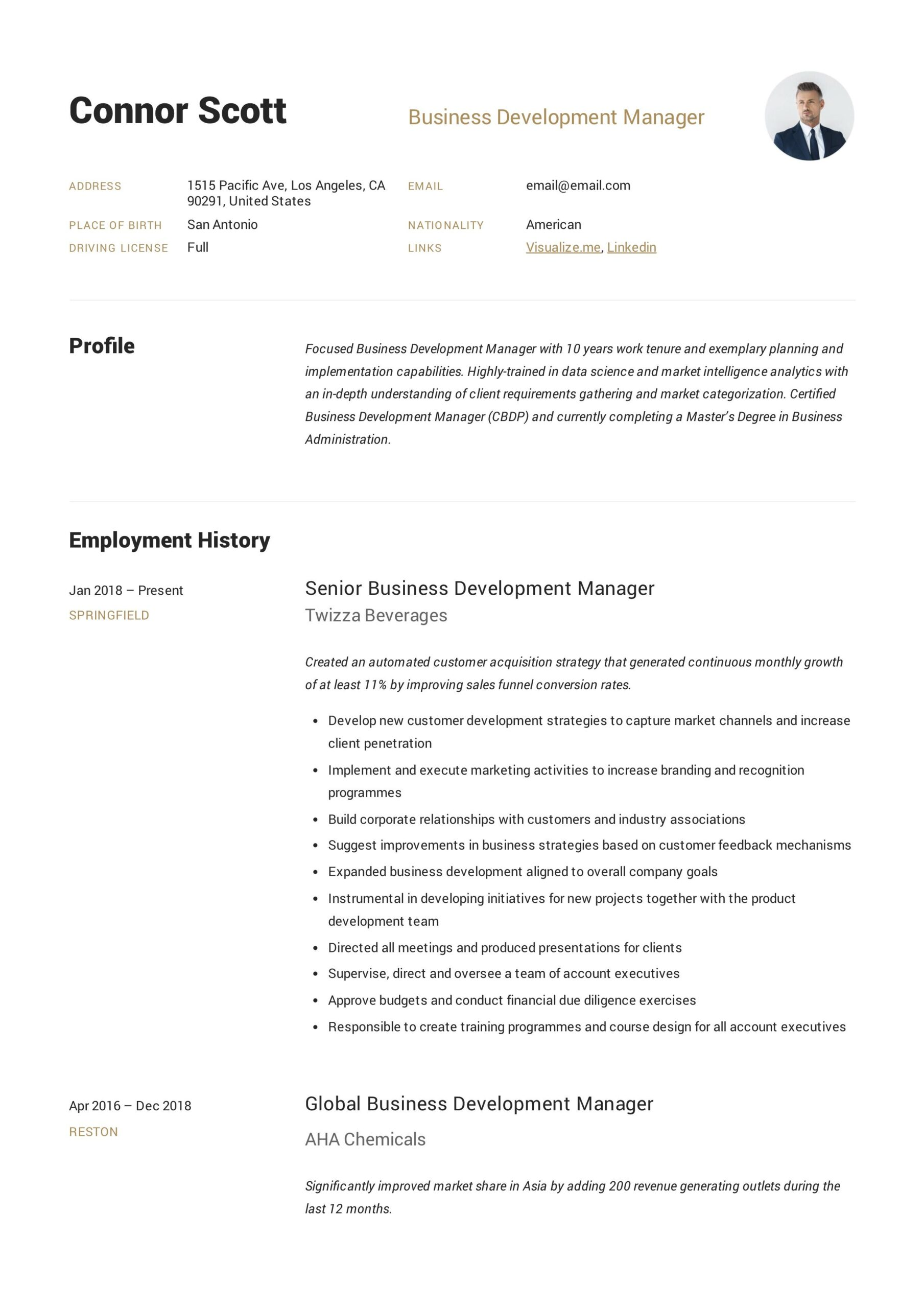 business development manager resume sample in guide senior accountant accounting legal Resume Business Development Manager Resume