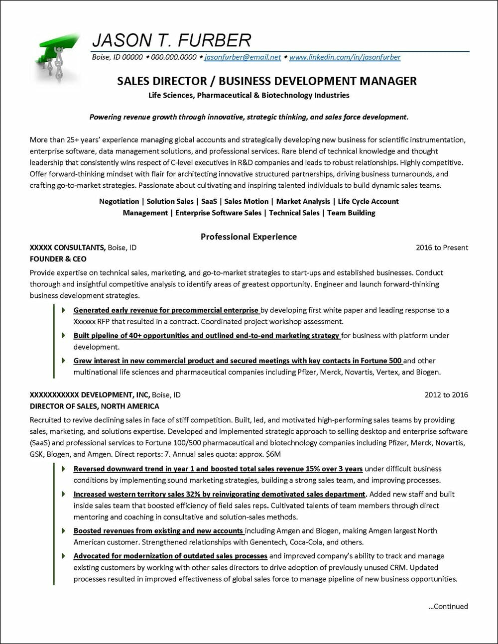 business development resume example distinctive career services director of manager Resume Director Of Business Development Resume
