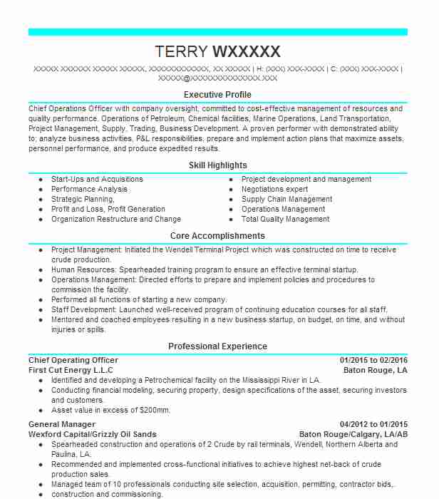 chief operating officer resume example resumes livecareer production sample statement Resume Production Officer Resume Sample