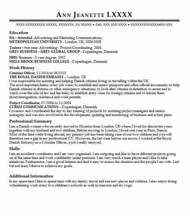 consular officer resume example resumes misc livecareer sample for visa interviews dragon Resume Sample Resume For Visa Interviews