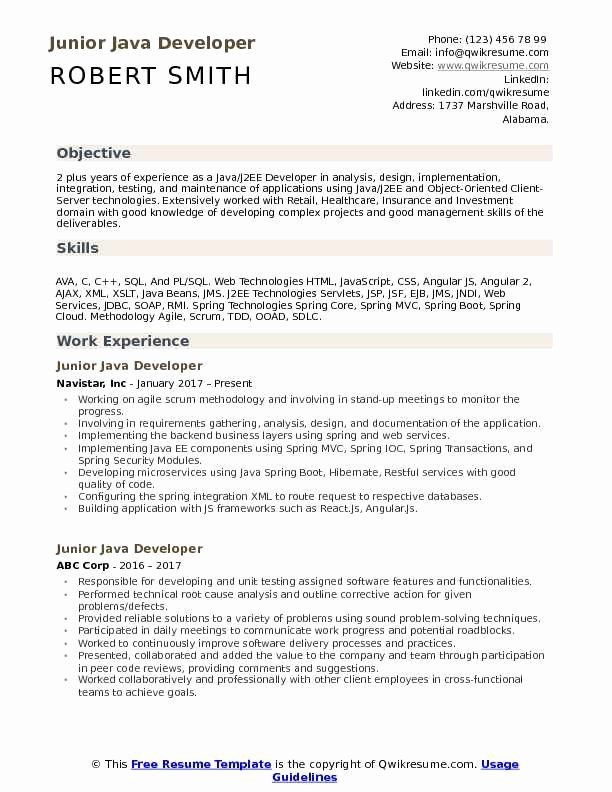 developer resume sample luxury junior samples in medical assistant skills objective soap Resume Soap Web Services Developer Resume