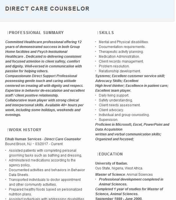 direct care counselor resume example resumes livecareer job description bms profile Resume Direct Care Counselor Job Description Resume