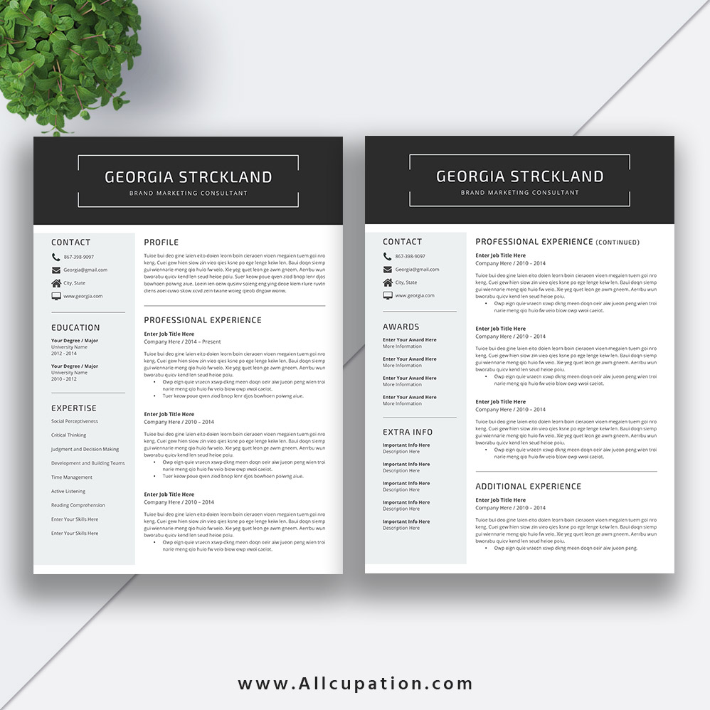 focus on quality content five well formatted resume templates with all sections Resume Two Page Resume Template Word