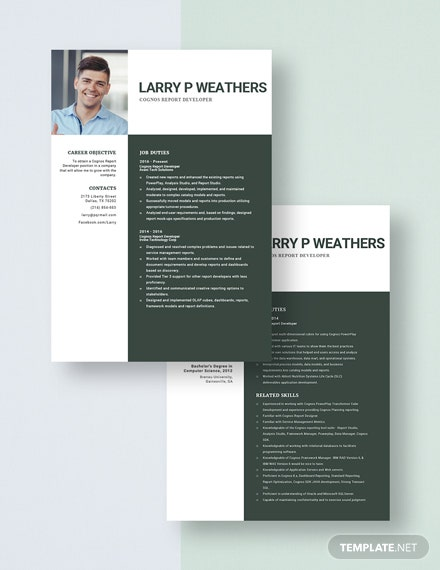 free designer resume cv template word indesign sample for cognos report developer Resume Sample Resume For Cognos Report Developer
