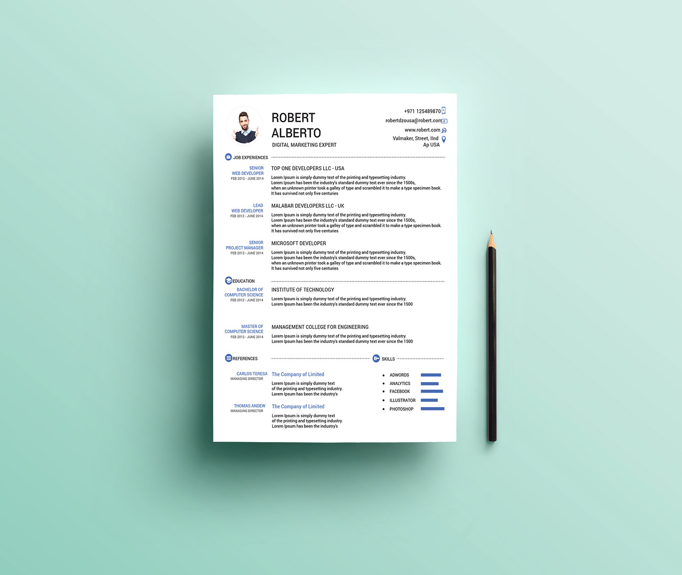 free one resume templates readymade format clean microsoft word template describing Resume Free Readymade Resume Format