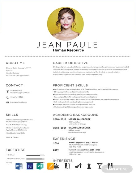 free resume cv templates word indesign apple publisher illustrator template net readymade Resume Free Readymade Resume Format