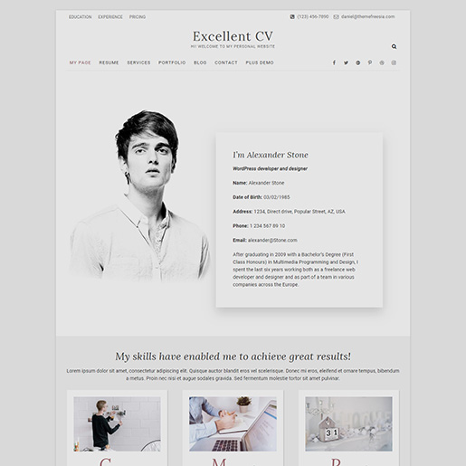 free wordpress resume themes for cv and websites best excellent truck driver skills Resume Best Free Wordpress Resume Themes