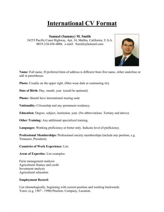 international resume format for overseas job this sum keeps simple and classy showcases Resume International Resume Format