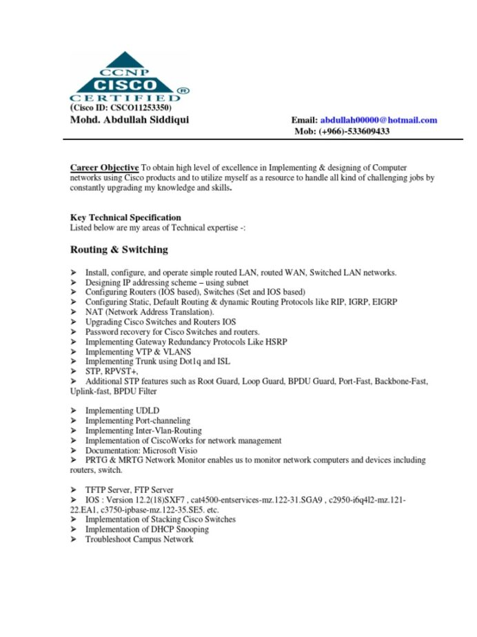 network engineer cv resume computer router computing with year experience treasury Resume Network Engineer Resume With 2 Year Experience