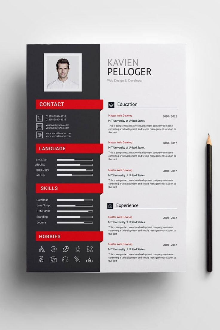 paper size 210x297 mm two template resume cv one reference design free creative for and Resume Paper Size For Resume And Application Letter