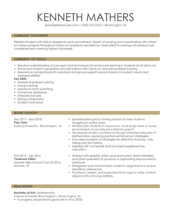 perfect resume examples for my self summary sample combination student private security Resume Self Summary For Resume Sample