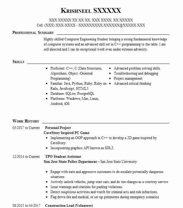 personal project resume example tinfo la jolla best programming projects for writing Resume Best Programming Projects For Resume