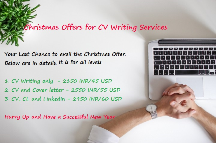 professional offer on resume writing cover letter linkedin profile services christmas Resume Linkedin Resume Services