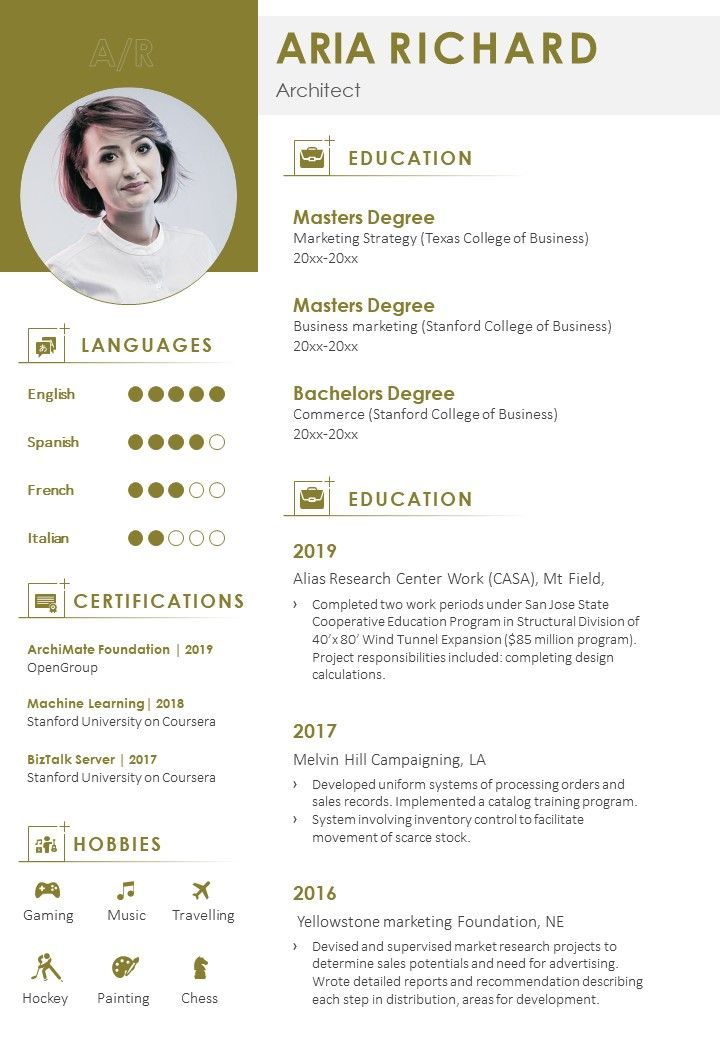 professional resume summary example format powerpoint shapes slide deck template Resume Summary Format For Resume