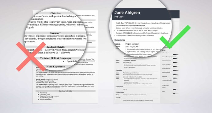 professional resume summary examples statements brief of your background for creative Resume Brief Summary Of Your Background For Resume