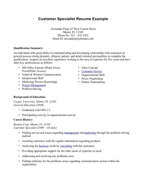 professional summary resume examples template free customer service overview rn skills Resume Customer Service Resume Overview
