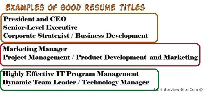 resume title examples of titles catchy example good for accounting clerk sample create Resume Catchy Resume Titles Example