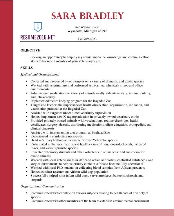sample resume for physical therapy school vet assistant profile veterinary template Resume Vet Assistant Resume Profile