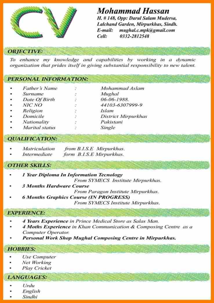 science resume cv format south africa for freshers job best objectives make stand out Resume Best Objectives For Resume 2017