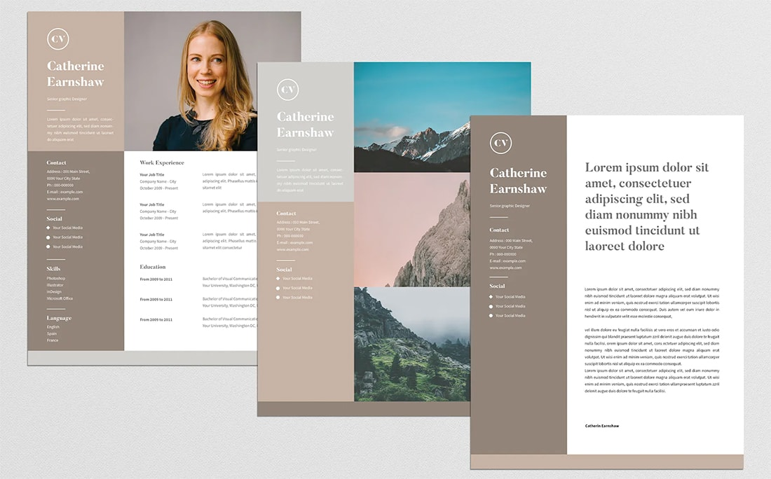 stylish resume color schemes for design shack professional colors earthy rbc sample Resume Professional Resume Colors