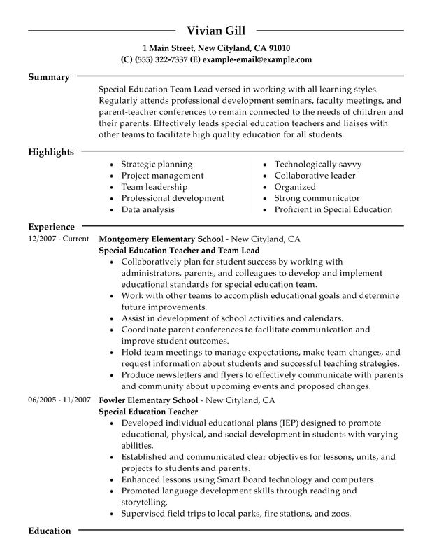 team lead resume examples free to try today myperfectresume leadership description for Resume Leadership Description For Resume