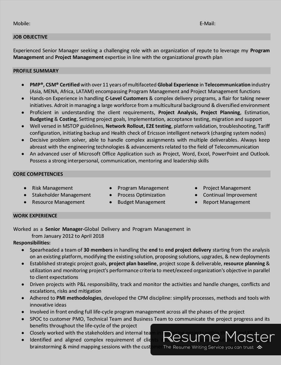 telecom project manager resume master sample summary examples for high school students Resume Telecom Project Manager Resume Sample
