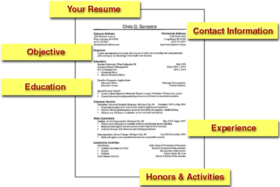 tips for resume templates to create professional cv get your proffessionally written Resume Professional Resume Tips