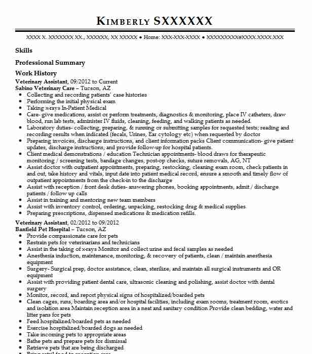 veterinary assistant examples resumes livecareer vet resume profile entertainment format Resume Vet Assistant Resume Profile