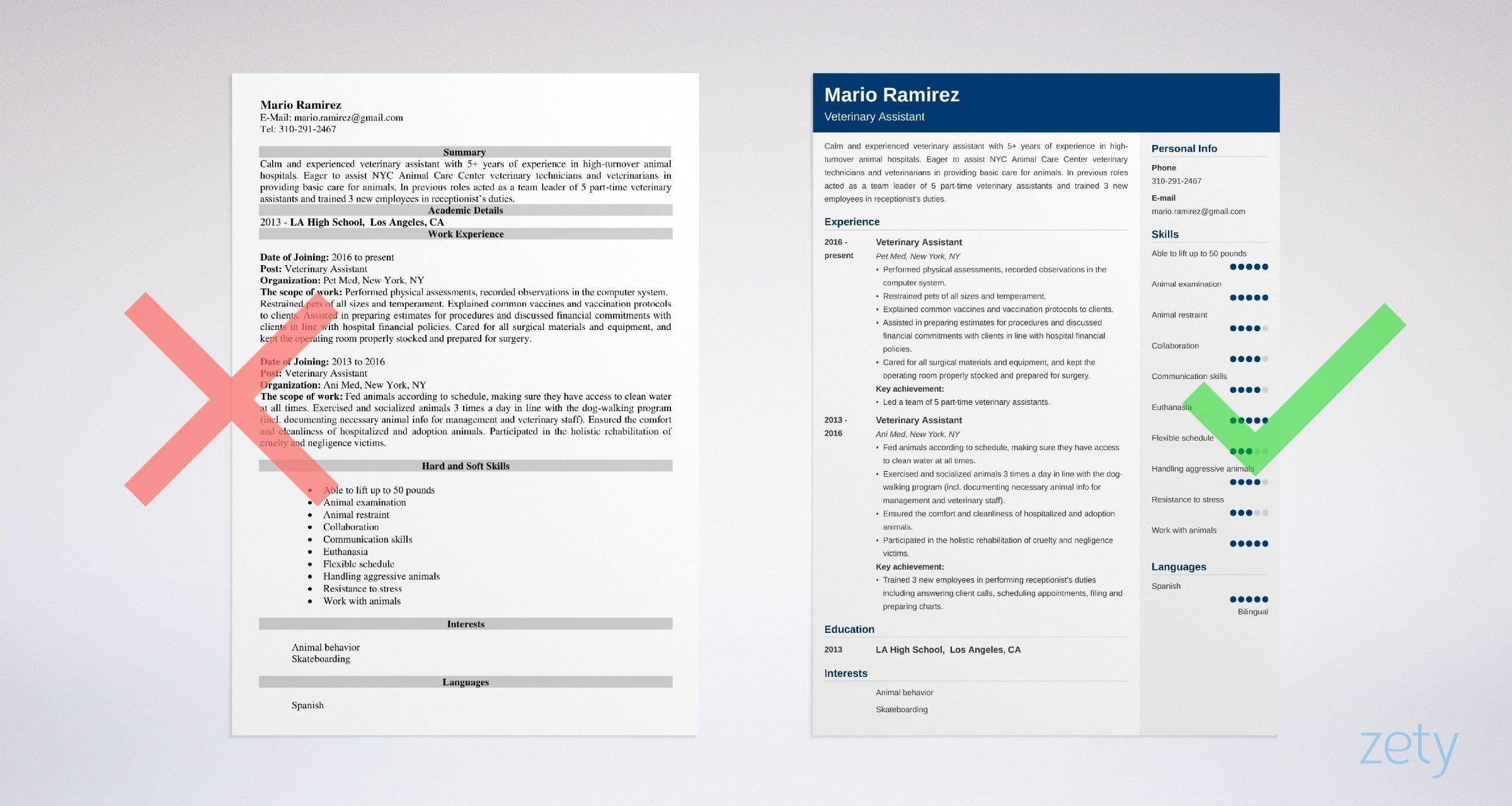 veterinary assistant resume sample writing guide tips vet profile example strong examples Resume Vet Assistant Resume Profile