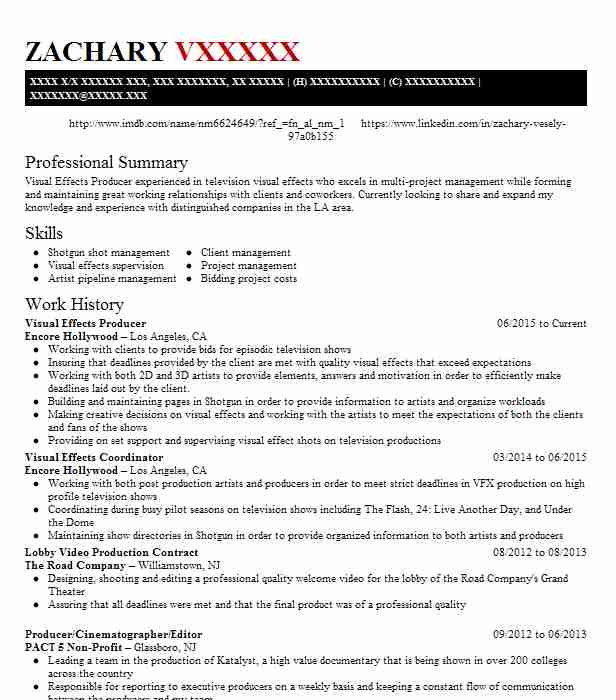 visual effects conform artist resume example local hero los angeles roto format Resume Roto Artist Resume Format