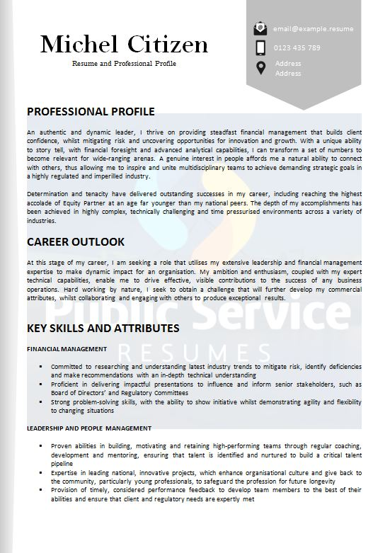 academic resume selection criteria writers public service resumes examples psr example Resume Resume Selection Criteria Examples