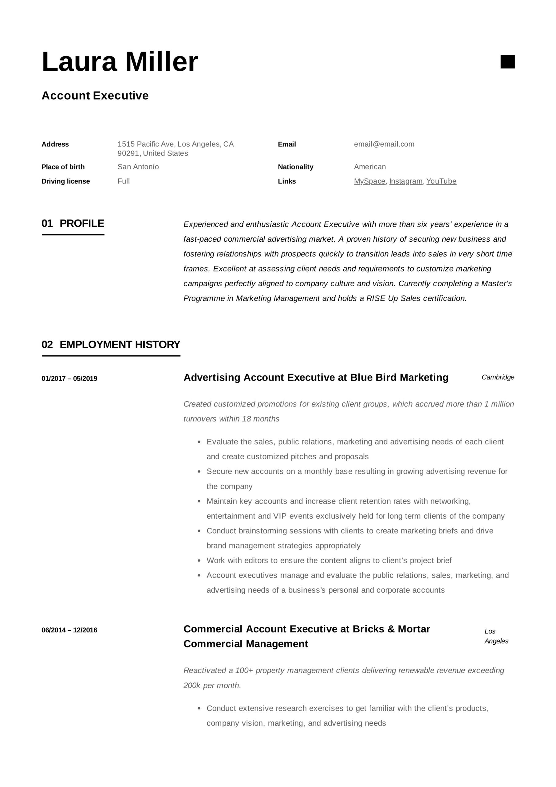 account executive resume writing guide templates pdf media example safety trainer Resume Media Account Executive Resume