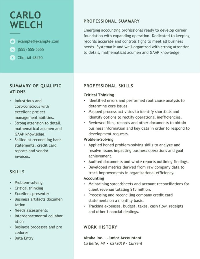 accounting resume examples and guides myperfectresume credit card reconciliation Resume Credit Card Reconciliation Resume