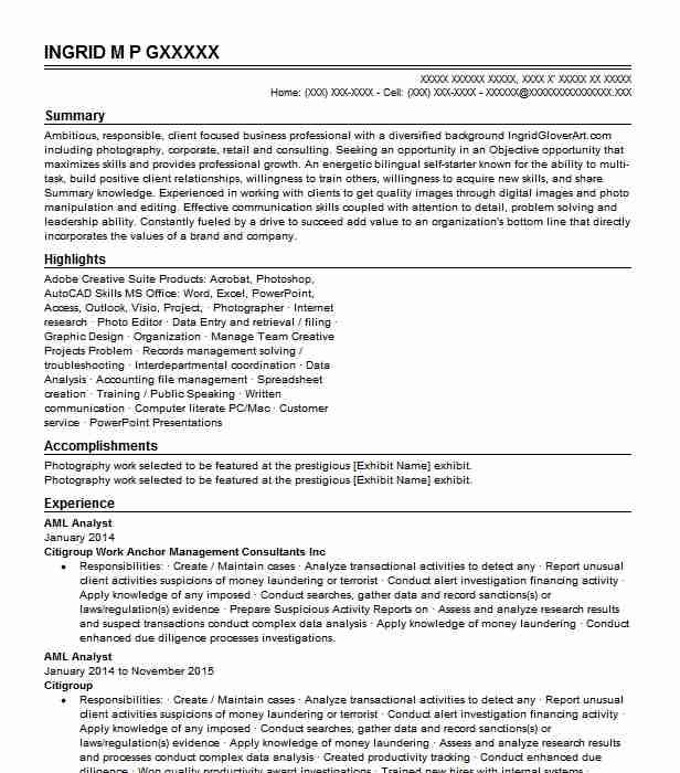 aml analyst resume example accountant resumes livecareer sample for kyc product marketing Resume Sample Resume For Aml Kyc Analyst