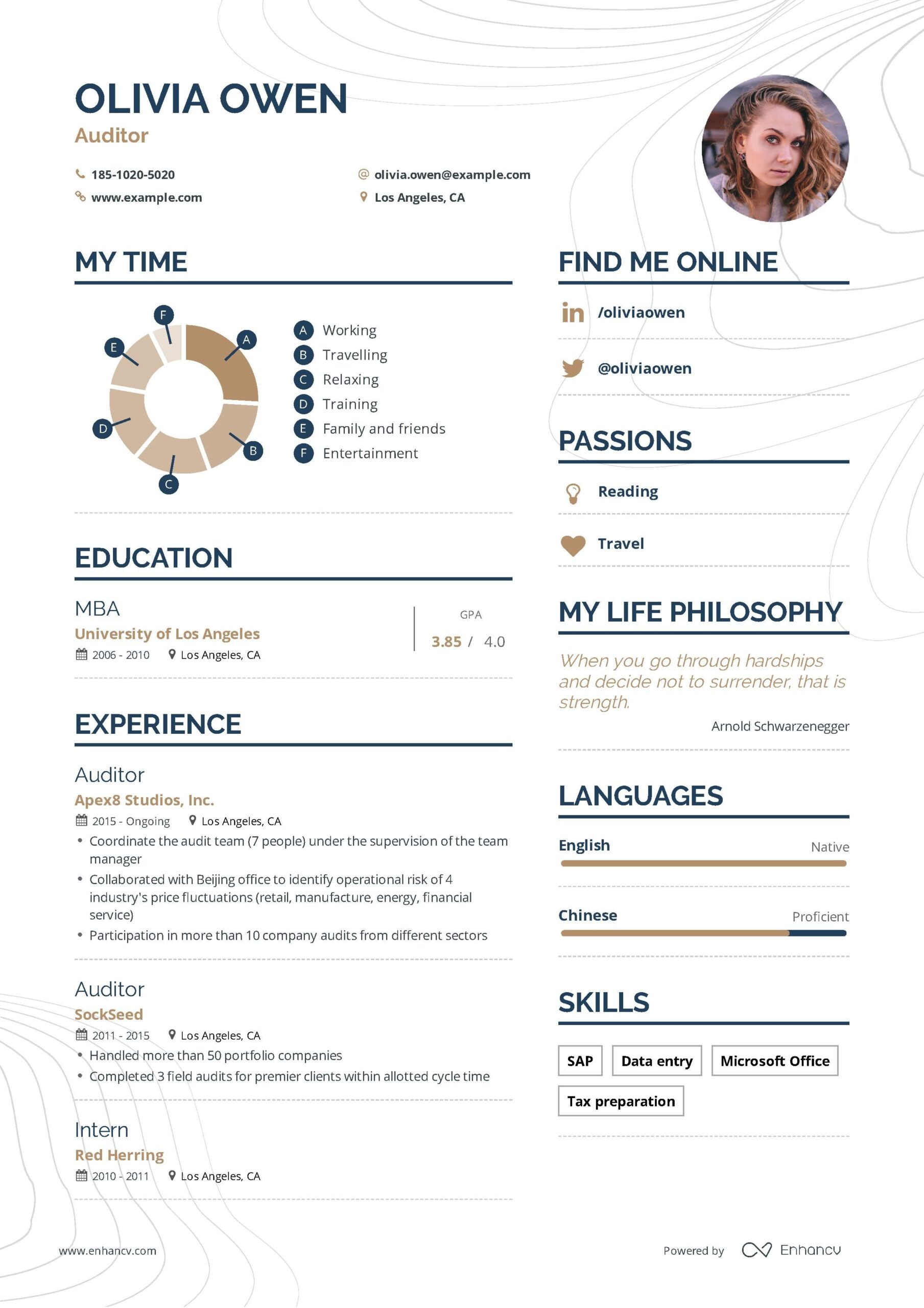 auditor resume example and guide for examples good job business free infographic template Resume Business Resume Examples 2019