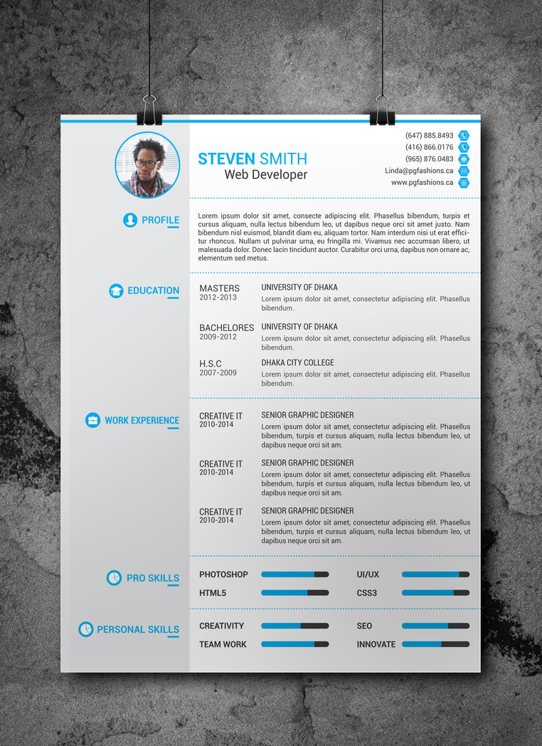 beautiful free resume templates dovethemes creative template information security officer Resume Free Creative Resume Templates 2019