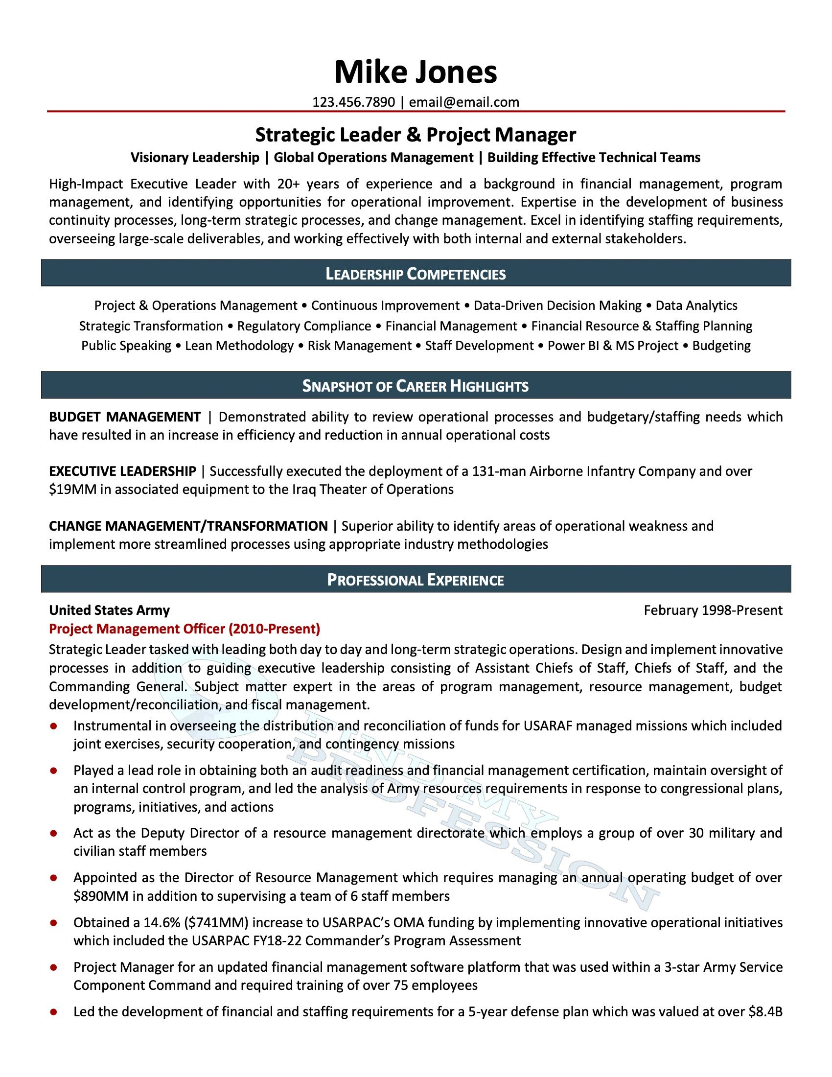 best affordable resume writing services samples professional review clerical game design Resume Professional Resume Review