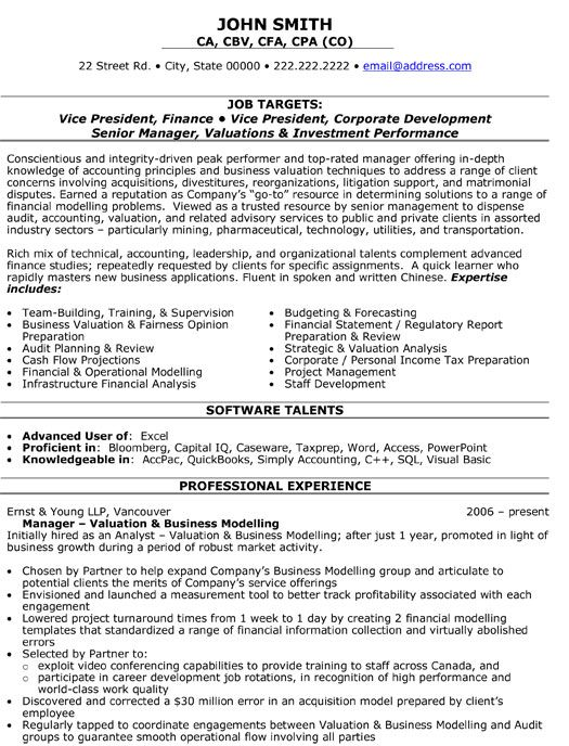 best finance executive resume format mis excel professional template experience sample Resume Mis Executive Resume Excel