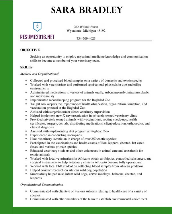 best veterinary assistant resume templates in objective for template sample canva free Resume Objective For Veterinary Resume