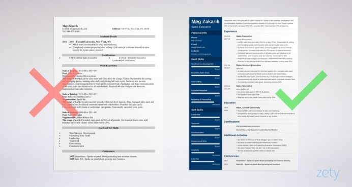 business resume template professional examples example1 email for sending masters Resume Business Resume Template