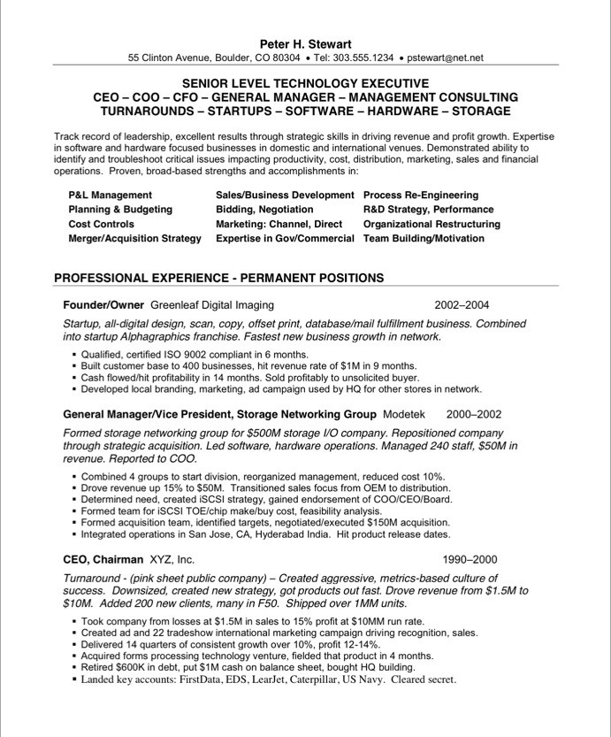 ceo coo free resume samples blue sky resumes templates 21before visualizer sample cna Resume Free Ceo Resume Templates