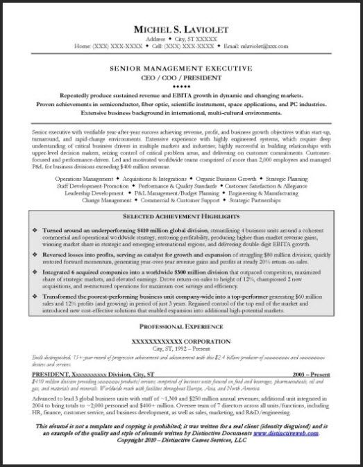 ceo resume example examples sample visual free templates costume assistant for volunteer Resume Free Ceo Resume Templates