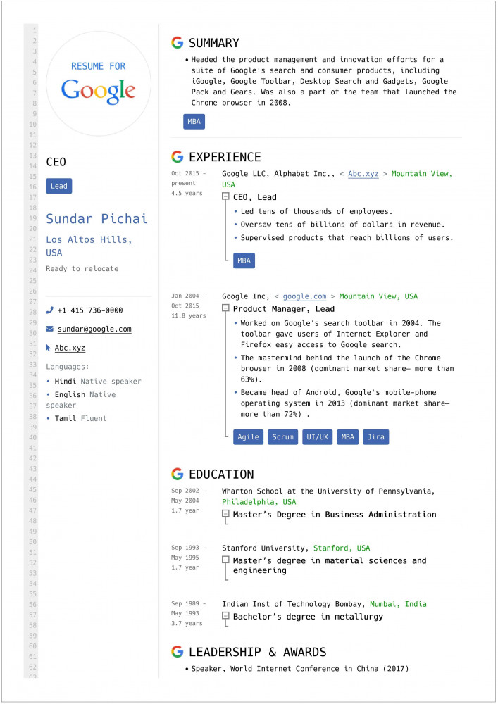 chief executive officer ceo resume template of google Resume Resume Of Ceo Of Google
